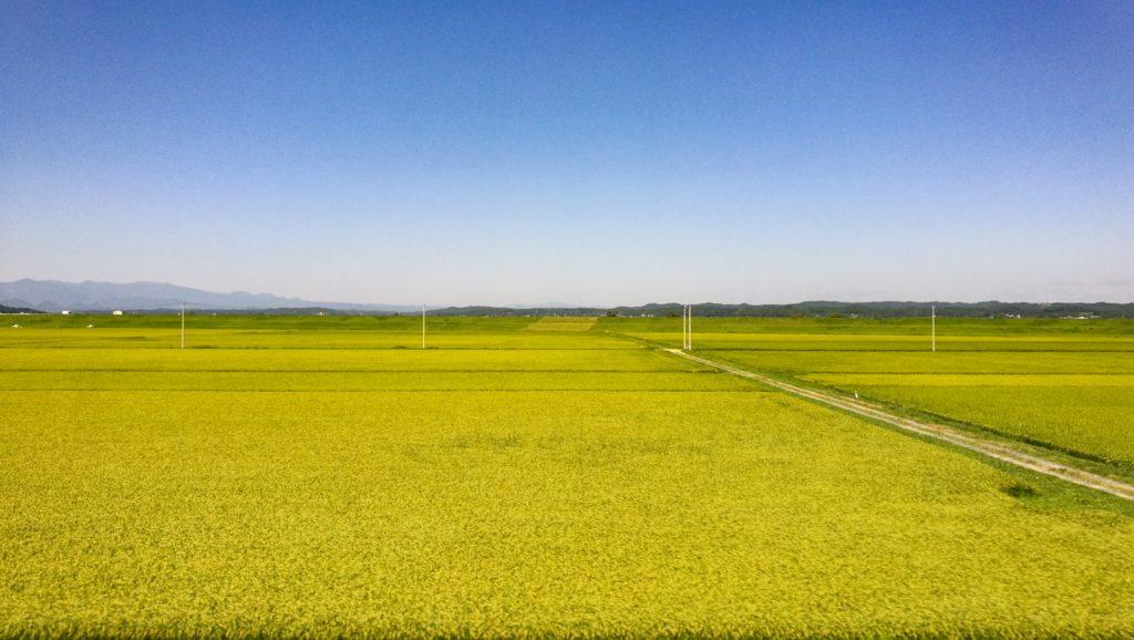 東北本線の田園風景